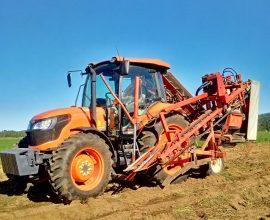 Récolteuse à carottes Dewulf