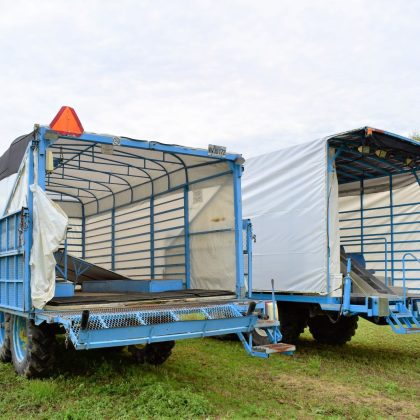 Remorque de transport pour brocolis