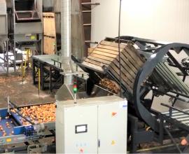 Videur automatique et son empileur de boites + 10 ponts roulants